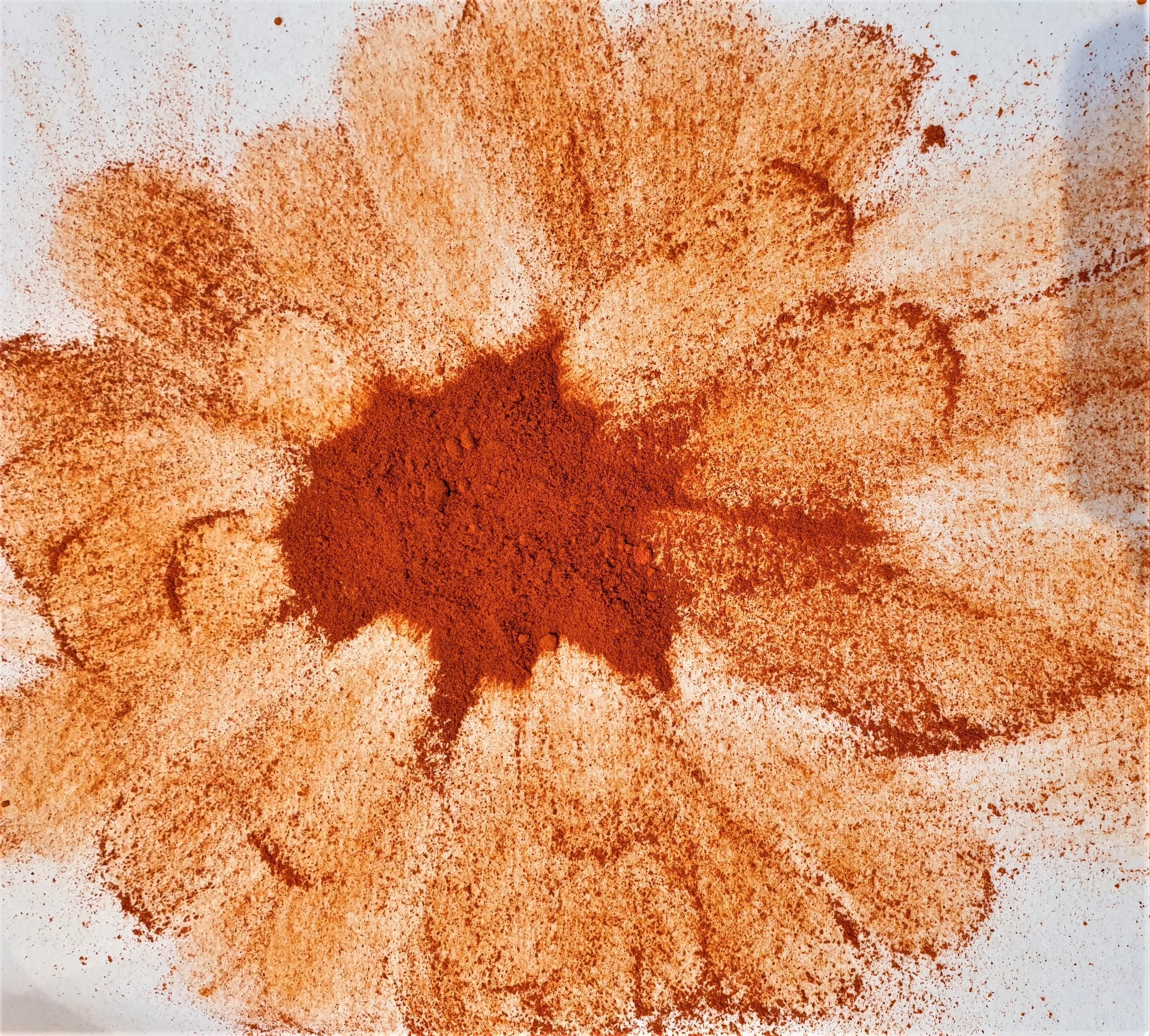 Safran poudre BIO 1 gr